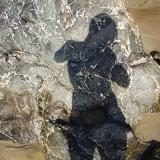 Autoportrait au rocher (2012)